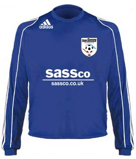 Adidas Cosmos brand Sassco shirt for the 2008-2009 season.