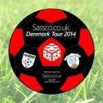 Official football for Denmark 2014.